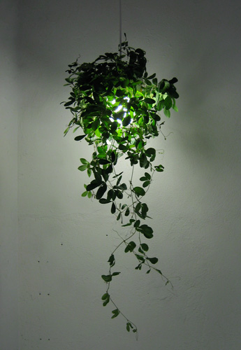 botanical lamp – jjoo design