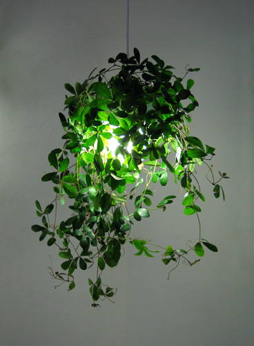 jjoo design botanical-lamp